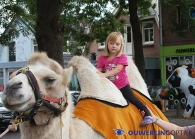 25-08-'12 Ouwerling Optiek